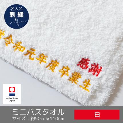 最高級ミニバスタオル「すごいタオル」名入れ刺繍