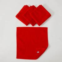 赤タオルセット(ミニ)今治タオル