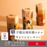 勝つためのタオル 【vs我】 甲子園パッケージ